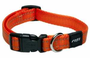 ROGZ COLLAR LEADS AND HARNESSES ORANGE