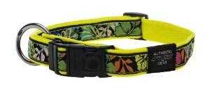 ROGZ DAYGLO FLORAL COLLARS AND LEADS