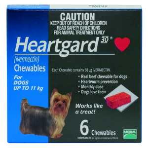 HEARTGARD PLUS CHEWS SMALL UP TO 11KG BL