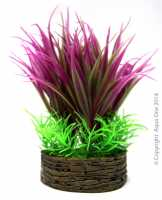 Planter Box Round Red/Green Grasses 7x4x